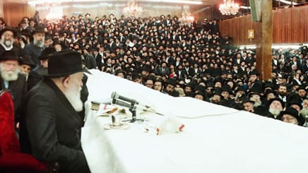 The Rebbe Brought MeBack
